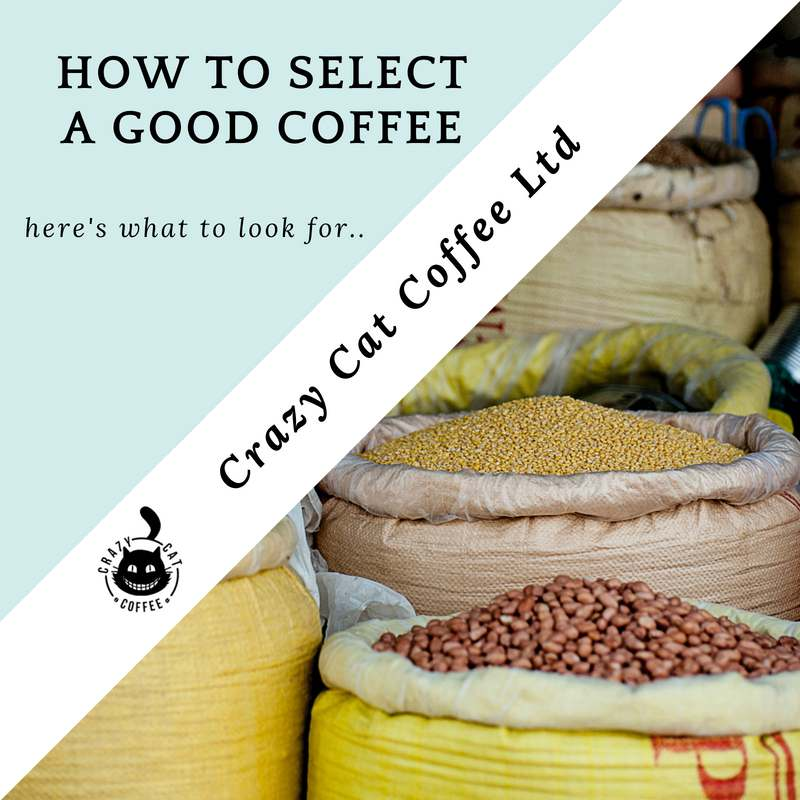How to buy a good coffee